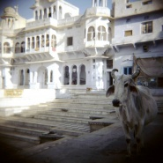 India_09_069.jpg
