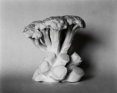edward-weston-cauliflower_1936