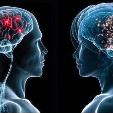 Neuro 1 & 2
