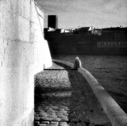 Paris vertical view