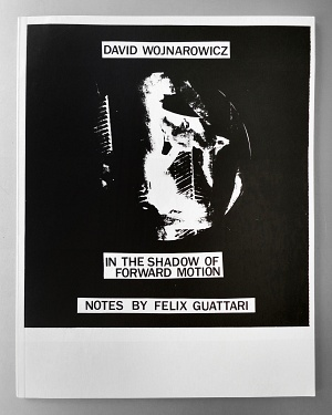 David Wojnarowicz In the shadow of forward motion