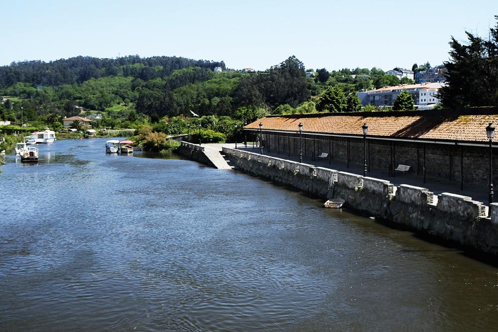 il cammino inglese da Ferrol a Santiago,