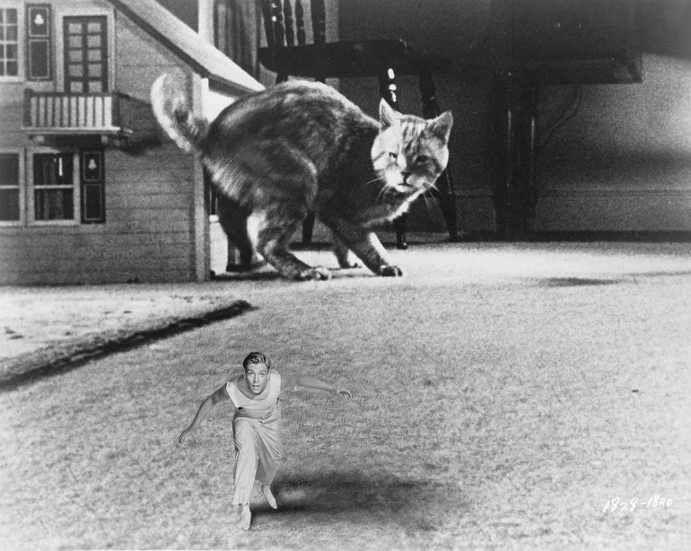 Jack Arnold - The Incredible Shrinking Man (1957)