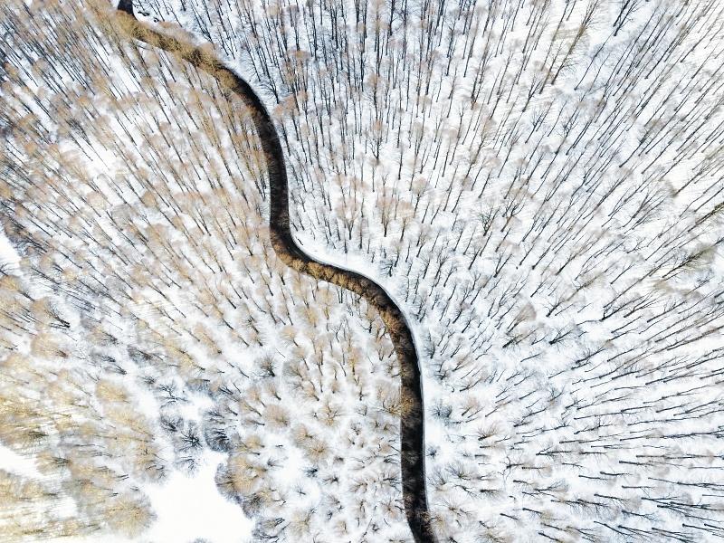 Valico di Forca d'Acero, Parco Nazionale Abruzzo - © 2021 Luca Prospero Luca Prospero Photographer